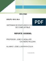 Reporte Biodiesel