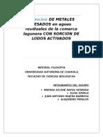 Lodos-activados-1.docx