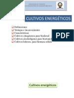 Capitulo 3 Cultivos Ebnerfgeticos 2015