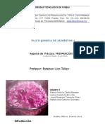 PREPARACIÓN DE UN INDICADOR CASERO.docx