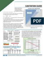 Cavitation_Guide.pdf