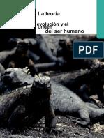 evolucion psicologica 2.doc