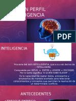Perfil de Inteligencia