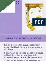 lipidios (1)