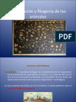 Clasificacion_y_filogenia_de_los_animales.pdf