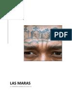 LAS-MARAS.-El-Fenómeno-criminal-del-siglo-XXI.-Ensayo (1).pdf