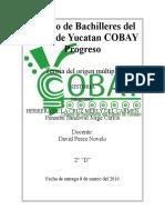 Colegio de Bachilleres Del Estado de Yucatan COBA