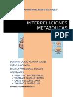 METABOLISMO SECUNDARIO.docx