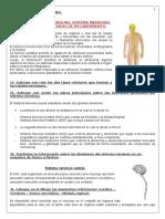 SISTEMA NERVIOSO COMPLETO PRIMERA PARTE (1).doc