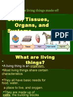 Cells Tissues Organs and Systems Power Point