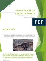 Contaminacion en Cerro