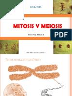 Mitosis y Meiosis Yutfutfuuf