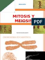 Mitosis y Meiosis Gsrfrgfgff