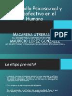 Desarrollo Psicosexual y psicoafectivo en el humano.ppt