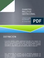 Expo Diabetes Gestacional
