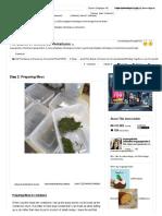 The Basics of Closed Jar Terrariums - 2.pdf