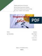 Trabajo sobre ingenieria civil