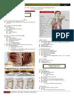 SURGERY Lecture 5 - Abdominal Wall, Omentum, Mesentery, Retroperitoneum (Dr. Wenceslao)