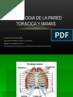 SEMIOLOGIA DE LA pared toracica y mamas.ppt