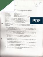 Informe Perito Acción Popular Urbanística 16jun2011