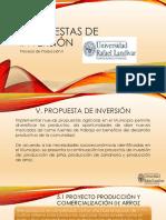 PROPUESTA DE INVERSION.pdf