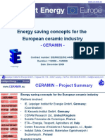 Ceramin Summary Slides En