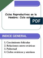 Ciclos Sexuales de Las Hembras