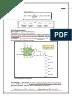 Photosynthesis Process Part 1