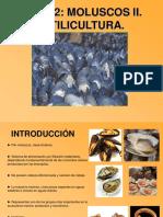 Tema 2 Mitilicultura