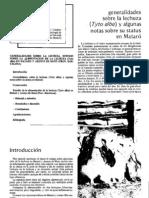 PDF Lechuzas
