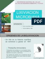 LIXIVIACION-MICROBIANA- xDpptx0