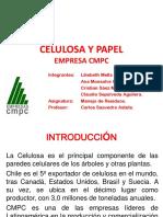 Celulosa y Papel