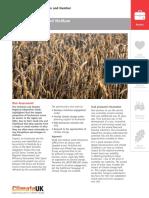SME Case_Studies_Combined_LR1.pdf