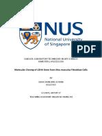 A0130765H_Lab Report 1.pdf