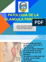 GLANDULAS-pppppffff-revisar