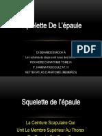 squelette de l'Epaule PDF