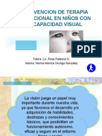 99528201 Intervencion de Terapia Ocupacional en Ninos Con Discapacidad Visual