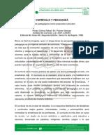 CURRICULO Y PEDAGOGIA.pdf
