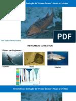 Peixes Osseos Atuais e Extintos.pdf