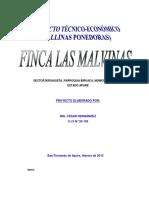 PROY GALLINAS PONEDORAS FINCA LAS MALVINAS.pdf