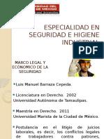Marco Legal y Económico de La Seguridad