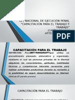 Presentacion Trabajo y Capacitacion Lnep)