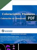 Wiener Clase 6 Histotecnologia Coloraciones Tisulares HE