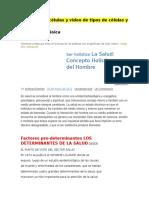 asignacion (Autoguardado).docx