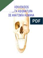 EFI 1.pdf
