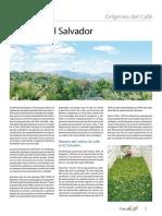 Cafe de El Salvador.pdf