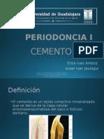 Cemento radicular