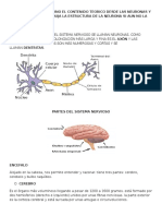 Guia Completa Sistema Nervioso 2016