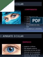 Aparato Ocular