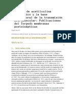 Receptor de Acetilcolina Nicotínico y La Base Estr